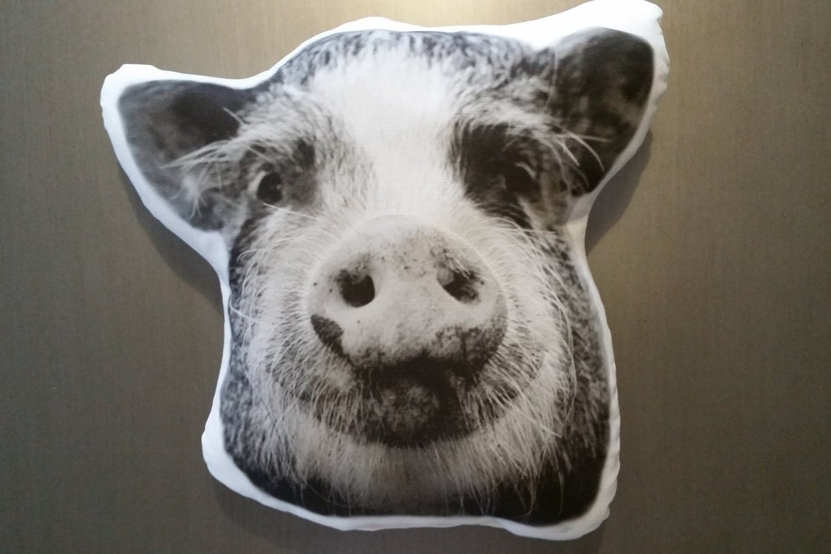 Farm Animal Pillow Pets : Custom Pet Pillow Animal Pet Pillow Photo Pet Pillow Pig