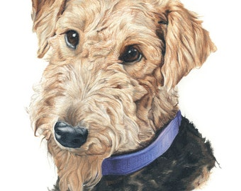 Greeting Card Print of Airedale Terrier