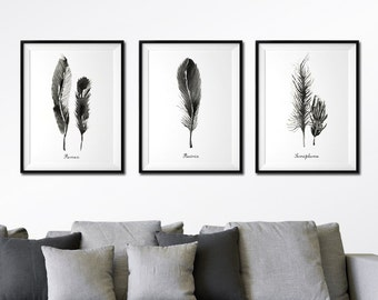 Feather watercolor art Living room wall art Set of 3 feather print Black and white print Bird feather art Nature art Feather poster