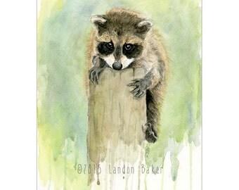 Baby Raccoon Original Watercolor Painting 8x10