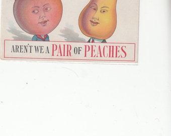 "Delightful Pun Humor ""Aren't We A Pair Of Peaches"" 1916 Antique Postcard"