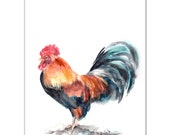 Rooster Watercolor Painting Art Print, Watercolour Art