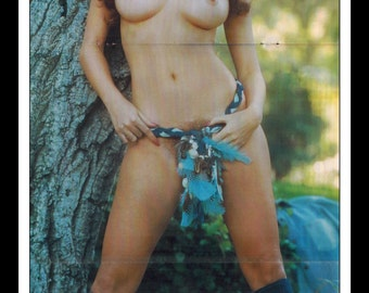 "Mature Playboy September 1975 : Playmate Centerfold Mesina Miller Gatefold 3 Page Spread Photo Wall Art Decor 11"" x 23"""