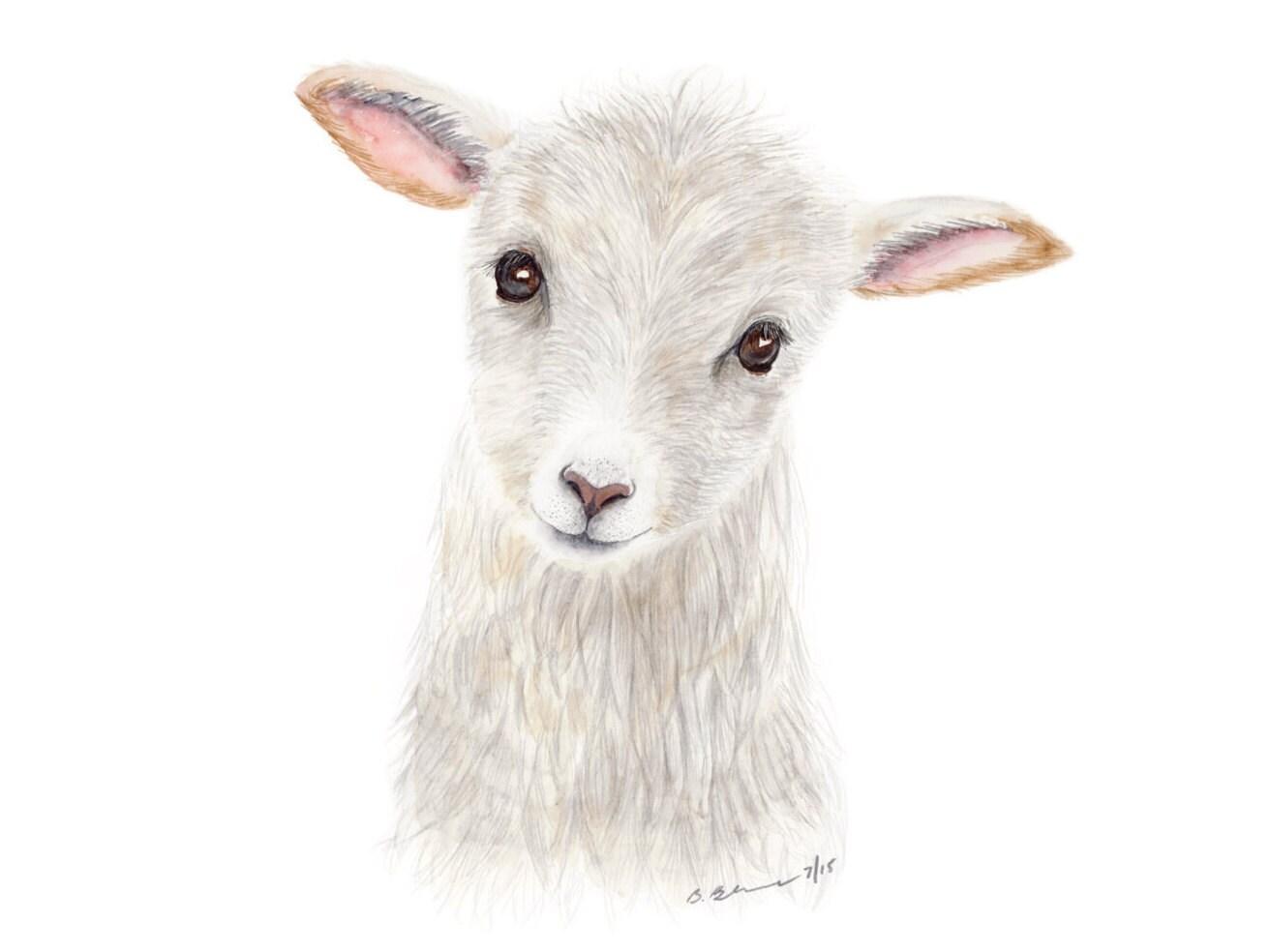 Baby Animal Watercolor
