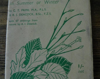 How to Identify Trees and Shrubs from Leaves or Twigs in Summer or Winter, 1936