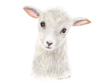 Baby Animal Portrait, Lamb Watercolor Print, Farm Nursery, Lamb Print, Farmhouse Art, Animal Print, Baby Sheep, Large Print