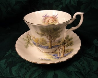 Royal Albert Forest Scene Cup and Saucer