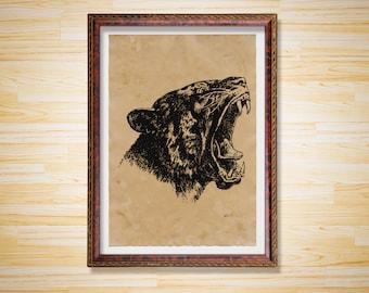Antique decor Tiger head print Animal poster