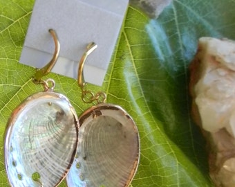 Authentic Native made 14k gold platted abalone shell earrings
