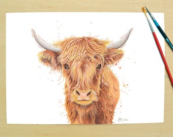 Highland Cow - A4 signed print from an original watercolour painting