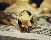 Vertebrae Ring on Toile, Bone Jewelry, Oddity, Curiosity