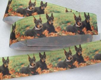 """Doberman Pinscher Dog Breed Grosgrain Ribbon 1"""""""