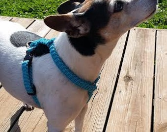 Neon Turquoise Dog Harness