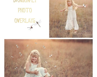 20 Dragonfly photo Overlays, photoshop overlays, png overlays, summer overlays, butterfly overlays