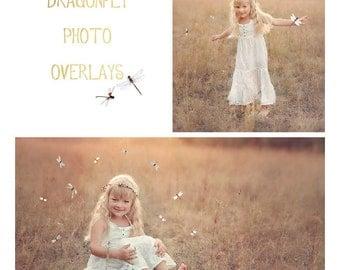 20 Dragonfly photo Overlays, photoshop overlays, png overlays, summer overlays, butterfly overlays
