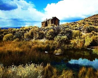 River Springs shack
