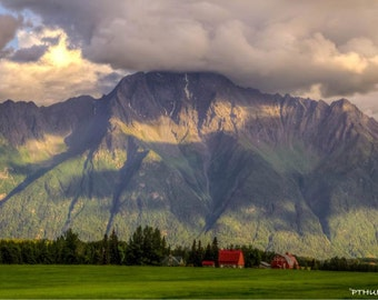 Alaska farm in Palmer
