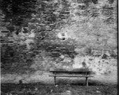 Black and white photography - Bench in Bologna - street art