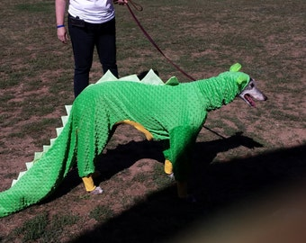 Greyhound Costume Dragon