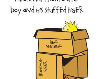 Calvin and Hobbes Everything I Learned In Life