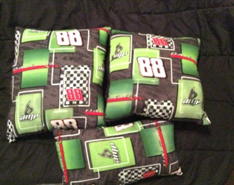 Dale Earnhardt Jr, Racing pillows, Dale Jr