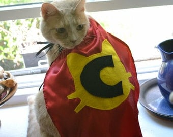 Superhero Cat Cape Custom Initial