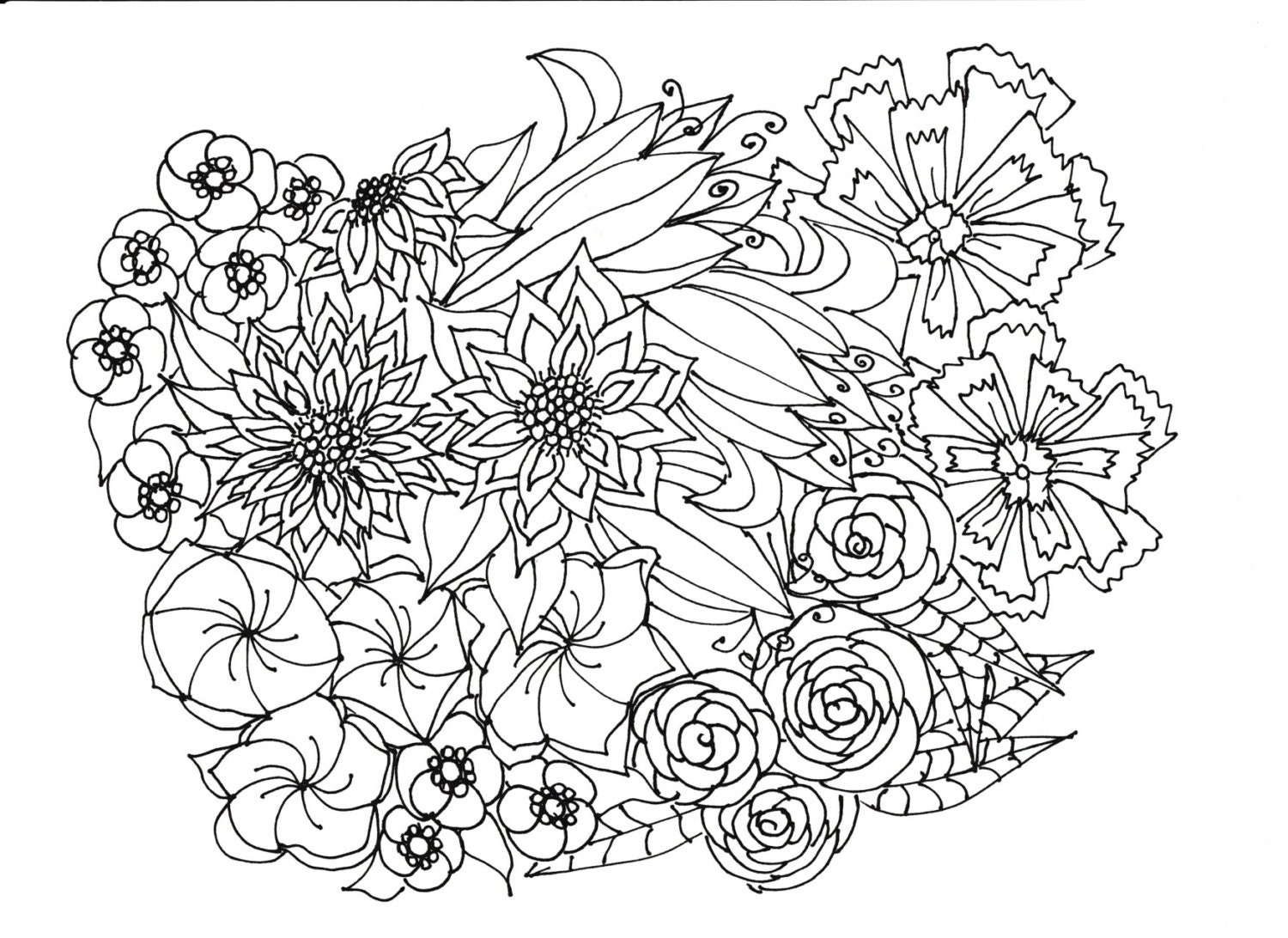 Adult Coloring Pages Flowers Plants