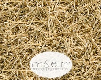 "Photography Backdrop 3ft x 2ft, Fall photography backdrop, Autumn Hay scene backdrop ""Hay There"""