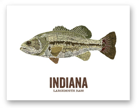Image gallery indiana state fish for Illinois game and fish