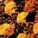 HALLOWEEN Fabric Applique 40 Orange Black Yo Yo 2 Inch Bobby Pin Barrette Hair Clip Trim