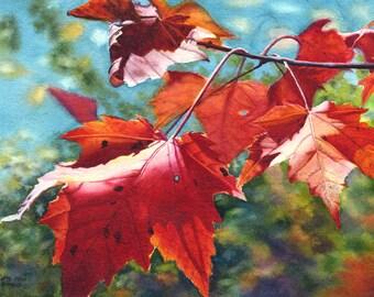 Red Leaves Art Watercolor Painting Print of by Cathy Hillegas, Autumn leaves, watercolor print, red, orange, burgundy, blue, green purple