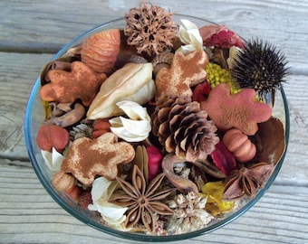 Autumn in the Country Fall Potpourri, Leaves, Rustic, Farmhouse Decor, Saltdough, Room Scent, Seasonal, Botanicals, Refresher Oil Included