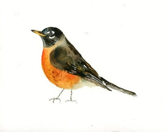 RED BREASTED ROBIN Original watercolor painting 10x8inch
