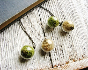 Lichen Necklace, Specimen In Glass Globe, Nature Necklace, Eco Friendly, Garden Gift, Terrarium Botanical, Natural Reindeer Moss