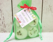 Crisp Apple Tealights 4 Pack - Green Daffodil - Handpoured - Siouxsan and Anne