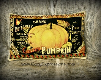 Fall pillow | Pillow Tuck | Fall Colors | Fall decoration | Pumpkin | Thanksgiving decoration | Thanksgiving centerpiece |  Pumpkin print