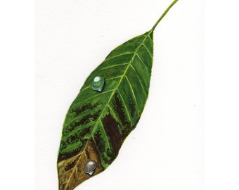 Leaf -- Original Watercolor Painting