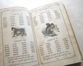 1868 Martindale's Primary Speller Illustrated Rare Book Not Digitized