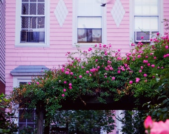 Pink House in Greenpoint Photography Print, Brooklyn New York City Photo, Flower Photography