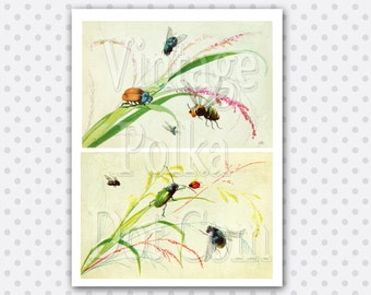 Clip Art Bugs on Plants Nature Set of 2 Victorian Graphics Clipart Vintage Printable Digital Collage Sheet Instant Download