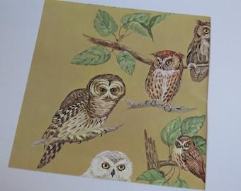 Vintage Unused Gift Wrap Sheet  ~ Owls of Red Barn Studio