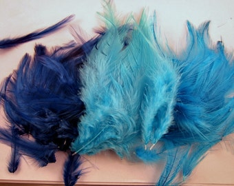 blue Feathers saddle mixed loose craft feathers
