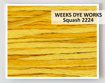 SQUASH 2224 Weeks Dye Works 6- strand embroidery floss : WDW hand over dyed overdyed thread cross stitch needlepoint