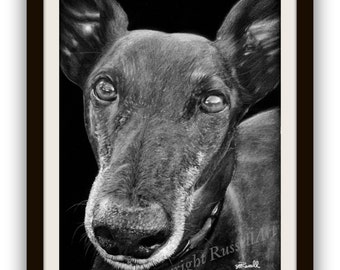 Black 3 B&W - Art Print of original Greyhound Whippet drawing by English Artist Stephen Russell of RussellArt