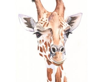 Giraffe print of watercolour painting A3 size largest print G5215, giraffe watercolor painting, African animal print
