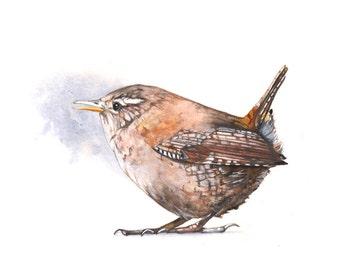 Wren Original watercolour painting - original art - bird original painting