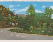 Chimney Tops, Above Loop-Over, Smoky Mountains, National Park - Linen Postcard - Unused (A)