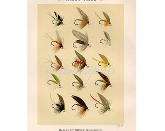 LARGE TROUT FLIES  glorious fly fishing print no. 1