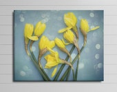 Yellow Flower Canvas, Daffodil Photo Canvas, Blue and Yellow Wall Decor, Modern Wall Art, Large Nursery Artwork, Floral Picture