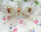 20 pcs  Mini glass bottles with corks 17x 40mm